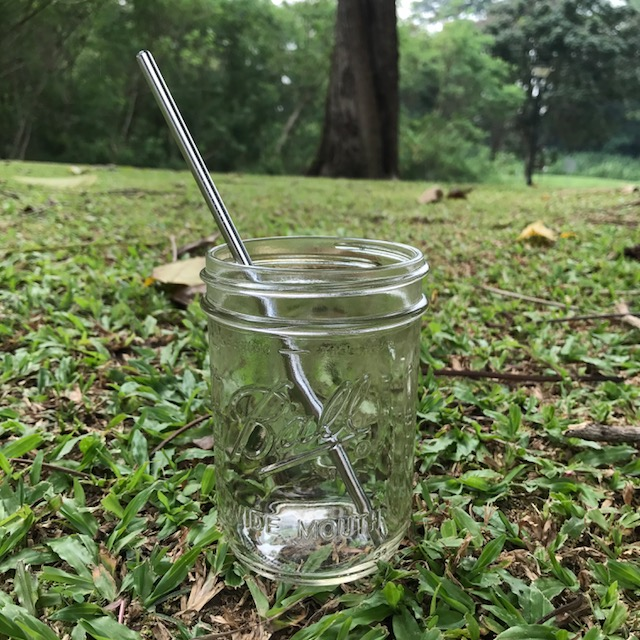 Stainless Steel Straw – Regular (304 grade)