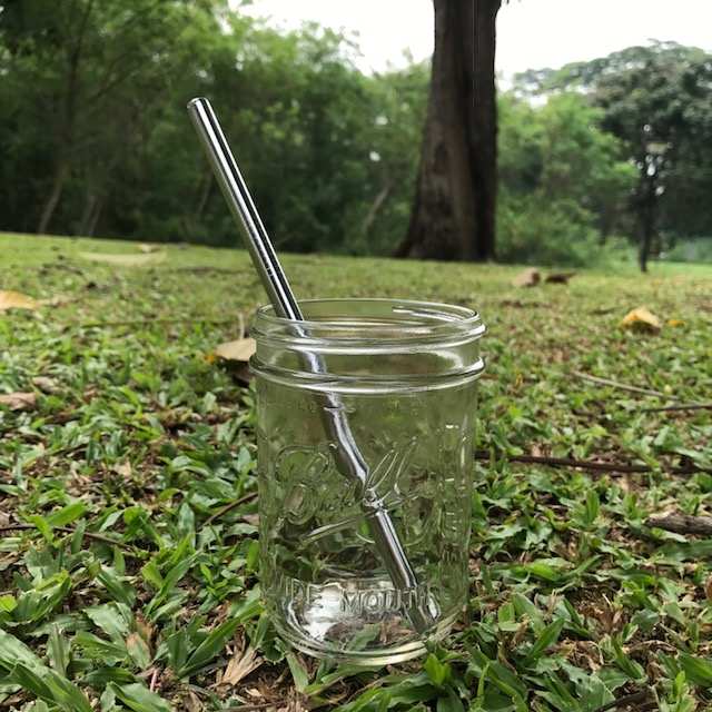 Stainless Steel Straw – Smoothie (304 grade)